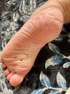 乾燥した足の裏の写真・画像素材[3583098]