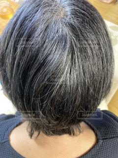 白髪の人の頭の写真・画像素材[3904661]