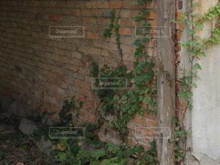 赤レンガの廃墟の写真・画像素材[2704856]