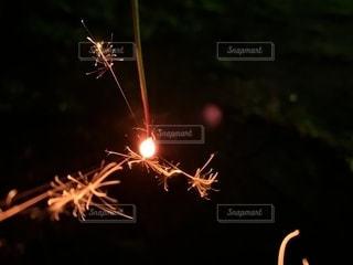 ナツノオワリの写真・画像素材[2680996]