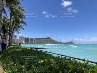 ハワイでの朝の景色の写真・画像素材[2683128]