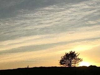 タラの夕陽の写真・画像素材[2684418]