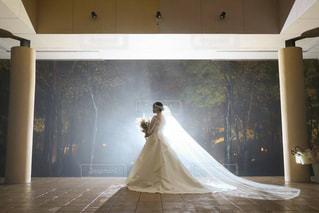ウエディングドレスの写真・画像素材[2684519]