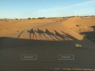 砂漠のタクシーの写真・画像素材[2690869]