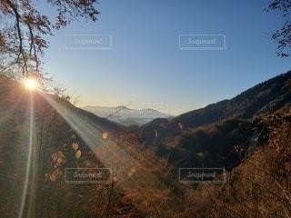 山を背景にした木の写真・画像素材[2685899]