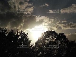 太陽の光と雲と木々の写真・画像素材[2687996]