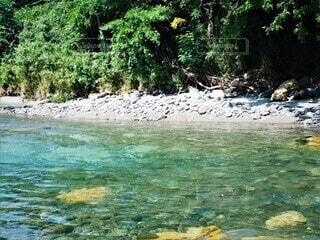 仙台市名取川のきれいな水の写真・画像素材[3740471]
