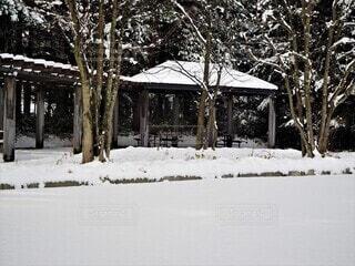 雪国の風景の写真・画像素材[3966112]