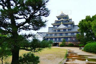 岡山城の写真・画像素材[1135974]