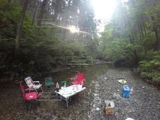夏,おしゃれキャンプ,森林,水,川,木漏れ日,河原,涼しい,河川敷,キャンプ,BBQ,涼,夏の終わり,避暑地
