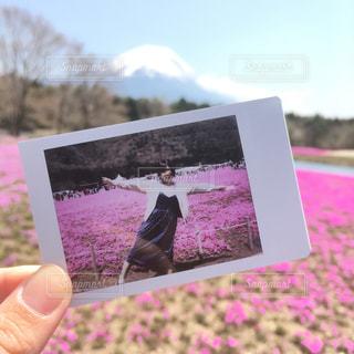 写真・画像素材[510440]