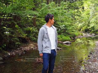 森林の写真・画像素材[510445]