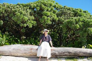 木に座っている女の子の写真・画像素材[757464]