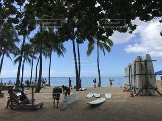 ヤシの木のある浜辺の人々の集まりの写真・画像素材[2693710]
