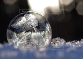 フローズンバブルの写真・画像素材[2696083]
