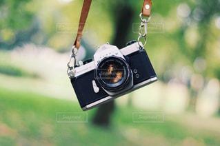 カメラと緑の写真・画像素材[2695027]