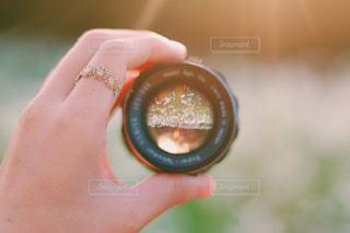 レンズ越しのコスモスの写真・画像素材[2696395]