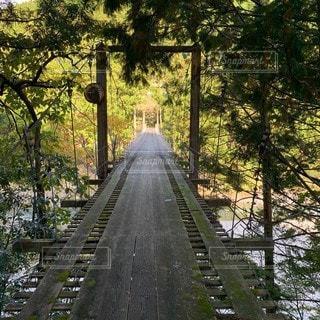 林道の吊り橋の写真・画像素材[2726540]