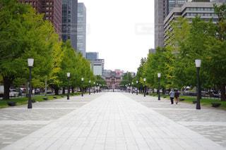 東京駅への道の写真・画像素材[2698641]