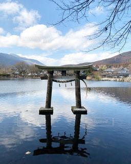 水の体に架かる橋の写真・画像素材[3416452]