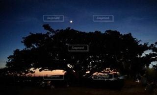 昼と夜の間の写真・画像素材[2705273]