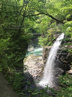 森の中の大きな滝の写真・画像素材[2712960]