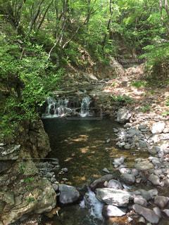 木々に囲まれた滝の写真・画像素材[2716810]