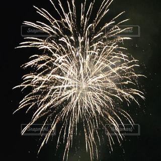 ライジングサンの花火の写真・画像素材[2703719]
