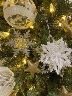 クリスマスツリーの写真・画像素材[2756657]
