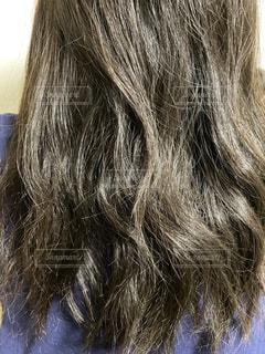 くせ毛の写真・画像素材[2760936]
