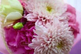 ピンクの花束の写真・画像素材[2706681]