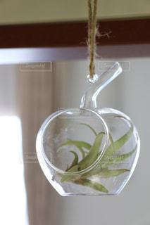 透明なガラスのボウルの写真・画像素材[2711970]