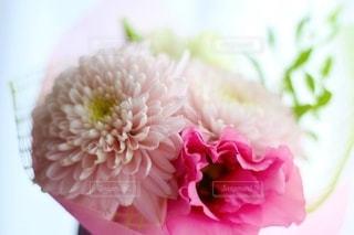 小さな花束の写真・画像素材[2714423]