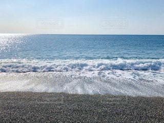 午前中の桂浜の写真・画像素材[2981140]