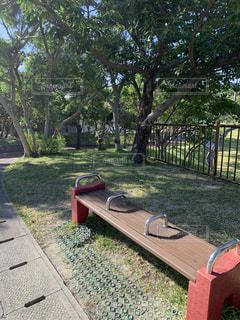 公園のベンチの写真・画像素材[2731572]