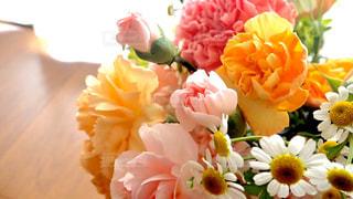 カーテンと花束の写真・画像素材[3118065]