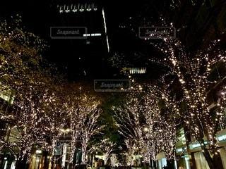真夜中のライトアップの写真・画像素材[2729550]
