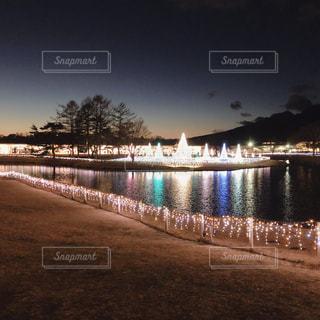 幻想的なライトアップの写真・画像素材[2716943]