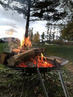 初めての焚き火の写真・画像素材[2722069]