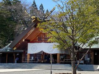 北海道神宮の写真・画像素材[4542926]