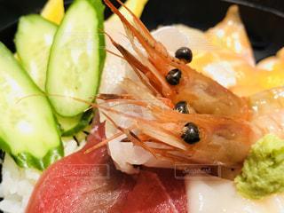 甘エビ 海鮮丼ランチの写真・画像素材[1028656]