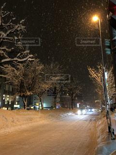 夜雪覆われた都市通りの側面にある記号の写真・画像素材[1031200]