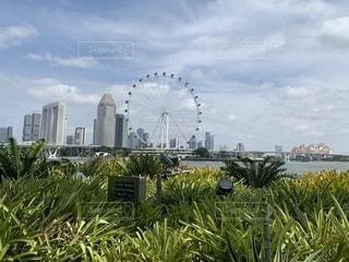シンガポールにての写真・画像素材[2761629]