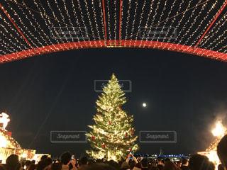 夜  星とクリスマスツリーの写真・画像素材[2739778]
