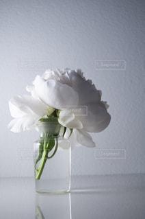 紫色の花で満たされた花瓶の写真・画像素材[2872411]