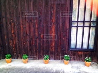 木製のドアの上に座っている犬の写真・画像素材[2761294]