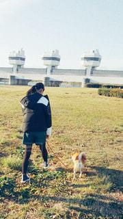 野原にいる人と犬の写真・画像素材[2890741]