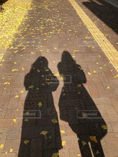 銀杏並木 二人の影の写真・画像素材[2732475]
