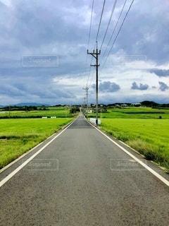 Sugar Roadの写真・画像素材[2734762]