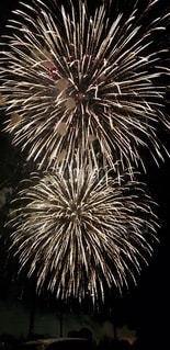 空の花火の写真・画像素材[2862585]